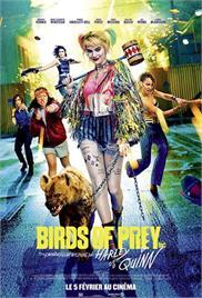 Birds of Prey (2020) (In Hindi)